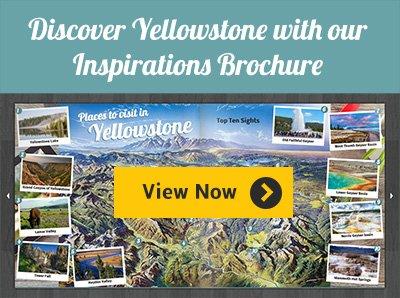 Yellowstone Inspiration Brochure
